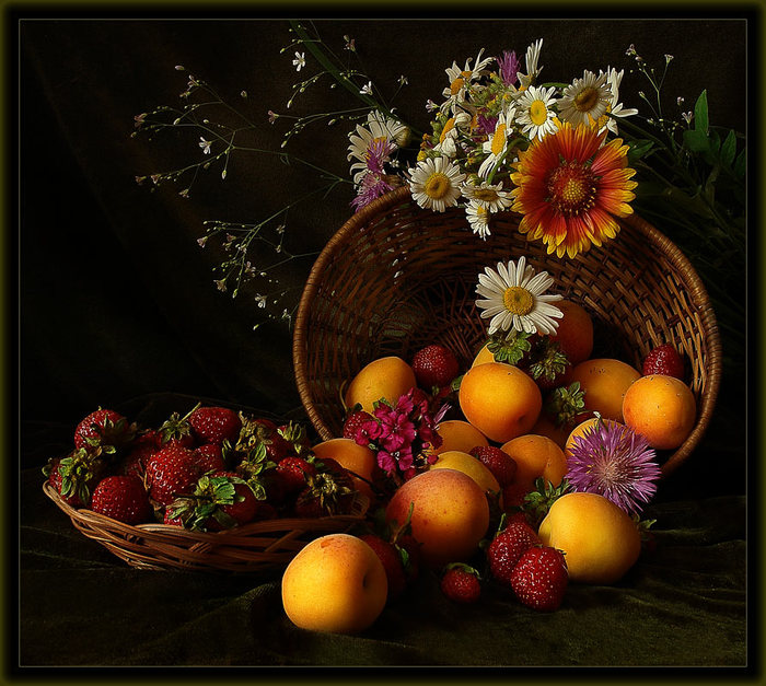 Фото. Категория записиСвободные темы. фрукты. натюрморты. Теги.
