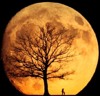 moon2 (319x308, 78Kb)