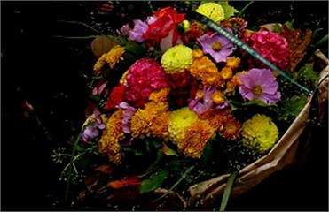 В Бразилии мужчина cорвал собственные похороны (371x240, 77Kb)