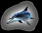 Превью дельфины на прозрачном слое (16) (216x167, 35Kb)