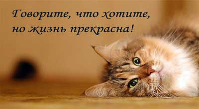 2979398_statusaszhiznironija (400x220, 11Kb)