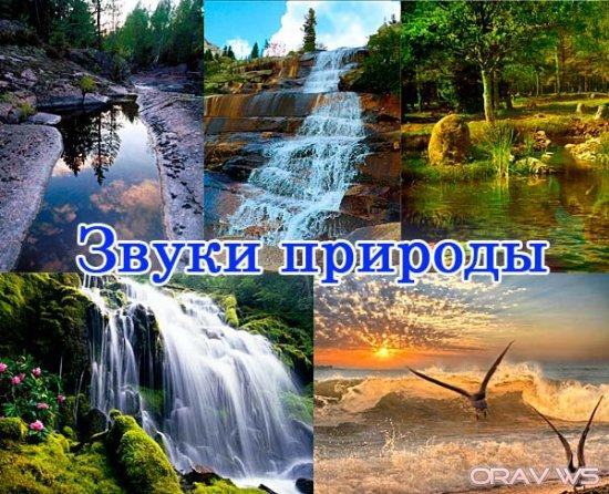 1332713079_600dfghjk487vbn (550x446, 89Kb)