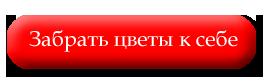 4502531_Bez_imeni1 (269x82, 5Kb)