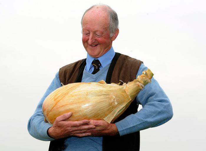 гигантские овощи фото 1 (700x513, 74Kb)