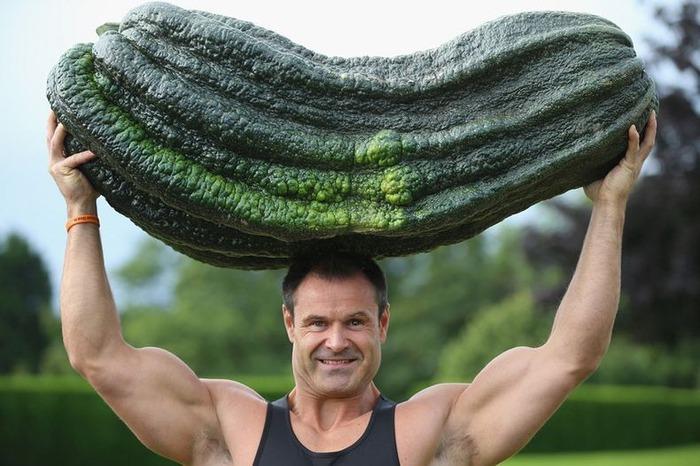 гигантские овощи фото 4 (700x466, 101Kb)