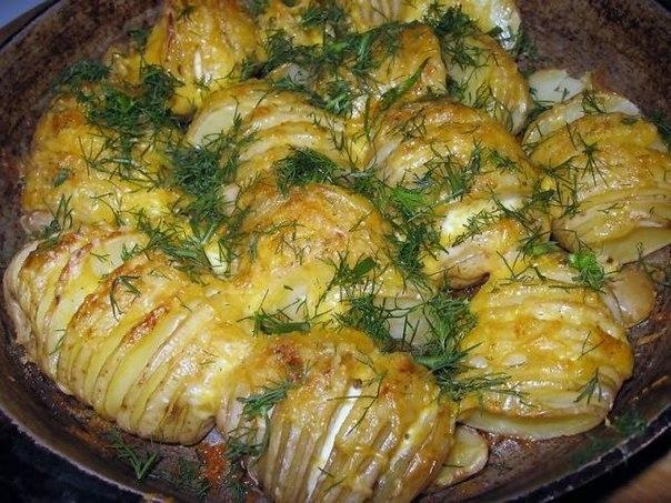 картофель (604x453, 93Kb)