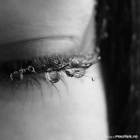 глаза ресницы (480x480, 57Kb)