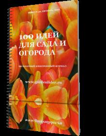Выпуск №50/1351514033_50 (219x280, 88Kb)
