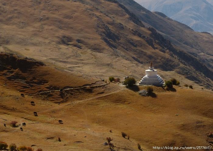 тибет (700x498, 266Kb)