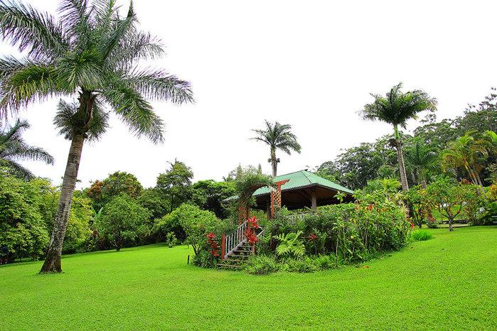 сады острова мауи фото 1 (700x466, 144Kb)