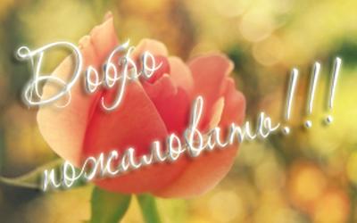 аватарка-розаа-краснаяjpg (400x250, 70Kb)