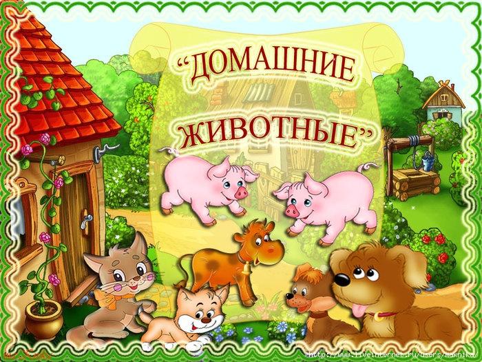 Книжка малышка для детского сада про домашних животных
