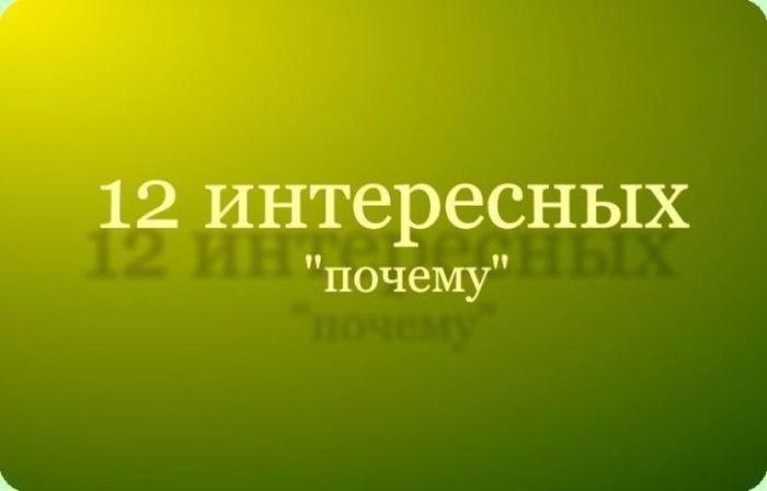 12_interesnykh_faktov_13_foto_1 (700x448, 20Kb)
