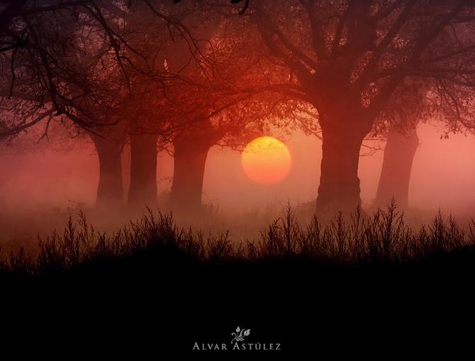 закат фото Alvar Astúlez. 1 (670x509, 92Kb)