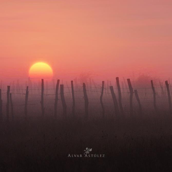 осенние фотографии Alvar Astúlez 2 (670x670, 68Kb)