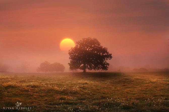 туман фото Alvar Astúlez 5 (670x446, 91Kb)