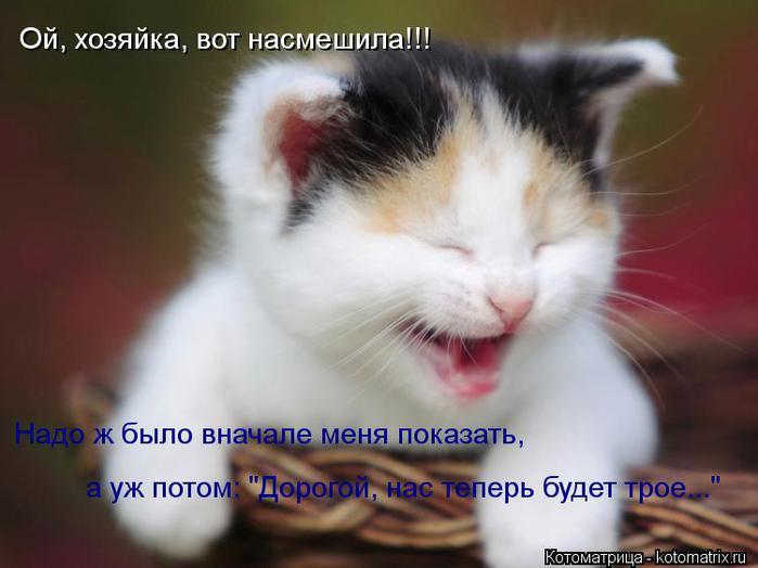 kotomatritsa_L7 (700x524, 38Kb)
