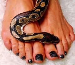 Однозначным трендом года змеи является покрытие с кусочками кожи рептилии.  Разумеется, сами хозяйки этих шкурок не...
