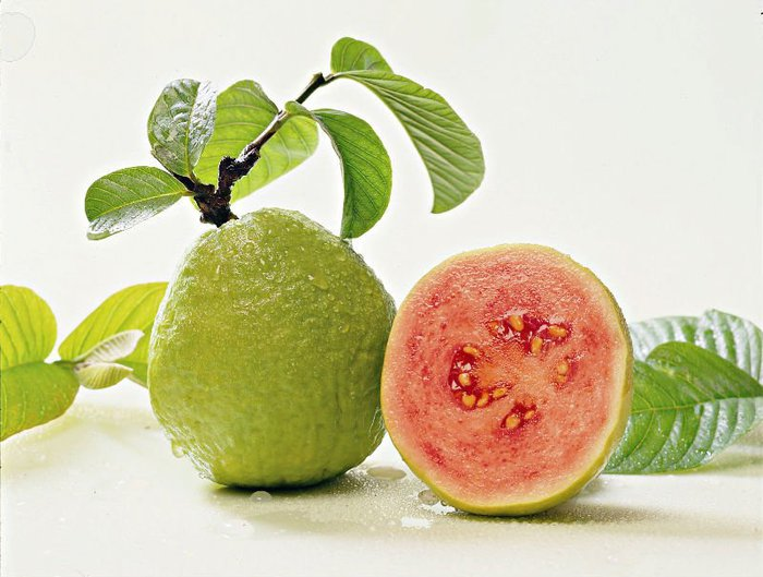 93400104_large_guava.jpg
