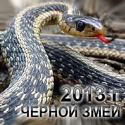 Новость на Newsland: 2013 год - год Змеи: что означает этот символ?/5022935_goroskop2013_1_ (250x250, 19Kb)