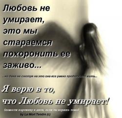 4979645_0_24f89_dc38aa7b_XL (250x242, 12Kb)