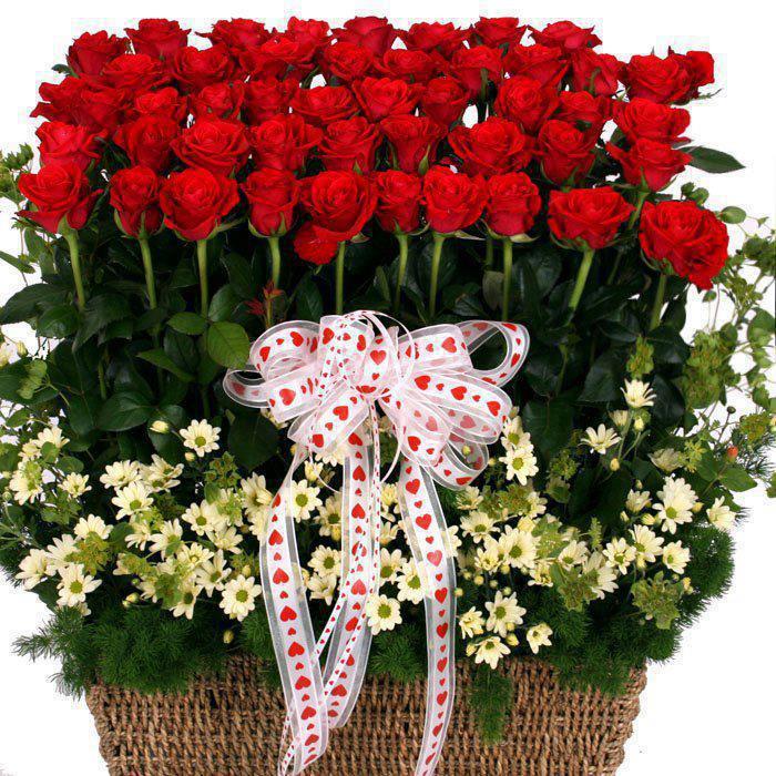 розы (700x700, 118Kb)