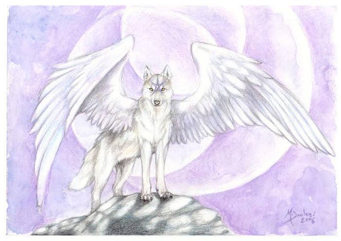 http://img0.liveinternet.ru/images/attach/c/6/93/462/93462190_Star_Wolf_by_m_lupus.jpg