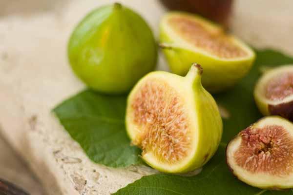 figs1 (600x400, 34Kb)