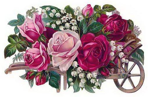 rose6 (509x333, 63Kb)