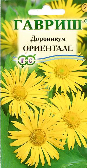 9571_doronikum_orientale (300x581, 43Kb)