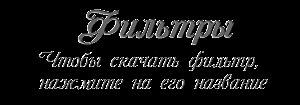 79599153_filtuy (300x105, 15Kb)