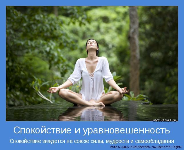 6 спокойствие и уравновешенность (644x524, 145Kb)