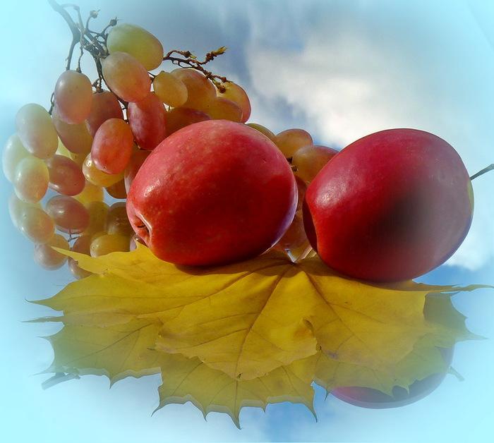 фрукты2 (700x628, 106Kb)