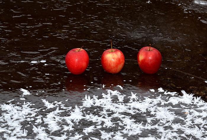 фрукты (700x474, 162Kb)