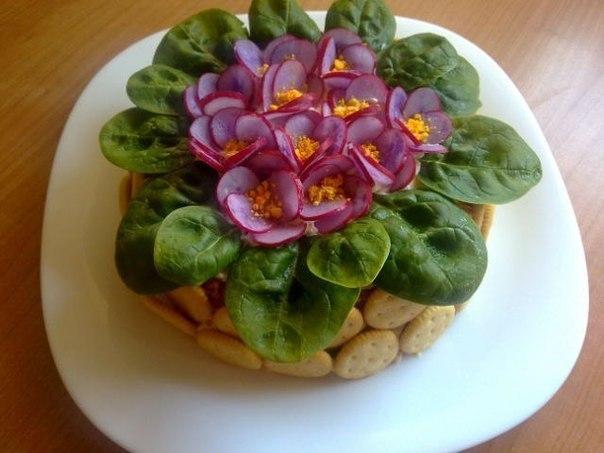 салат фиалки (604x453, 48Kb)