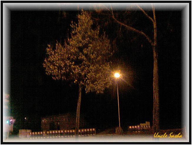 foto-0073.10.12.3 (652x492, 101Kb)