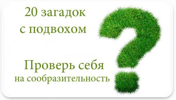 3291418_1352246063_ed5bb825c3 (570x324, 37Kb)