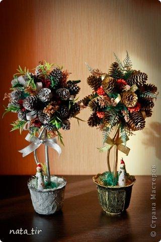topiary (5) (320x480, 39Kb)