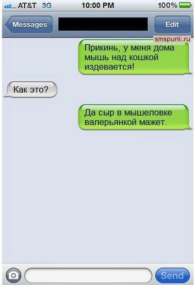 SMS (36) (400x586, 29Kb)