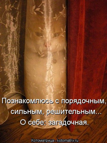 kotomatritsa_xj (453x604, 53Kb)