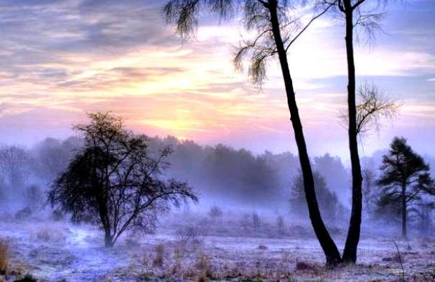 Поздняя осень, заморозки (621x403, 41Kb)