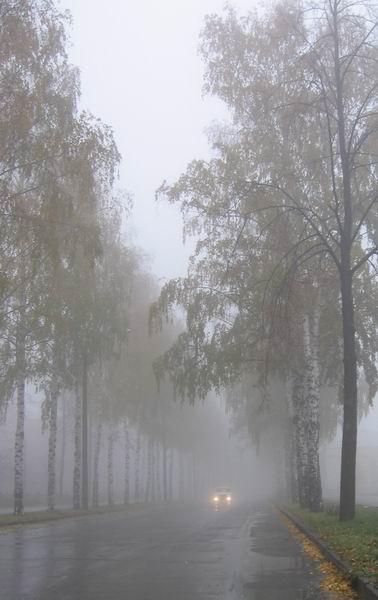 Resize of IMG_7032_1  туман (378x600, 36Kb)