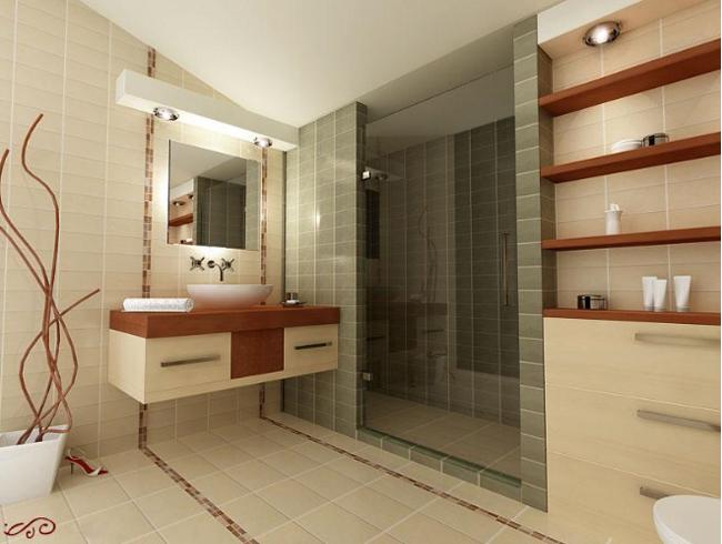 project-bathroom-constructions1 (650x490, 185Kb)