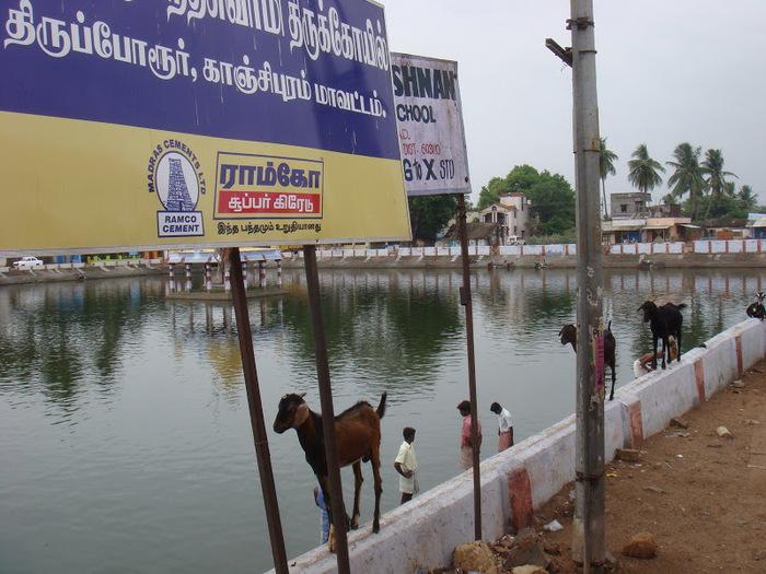 Исторический комплекс Махабалипурам 59519