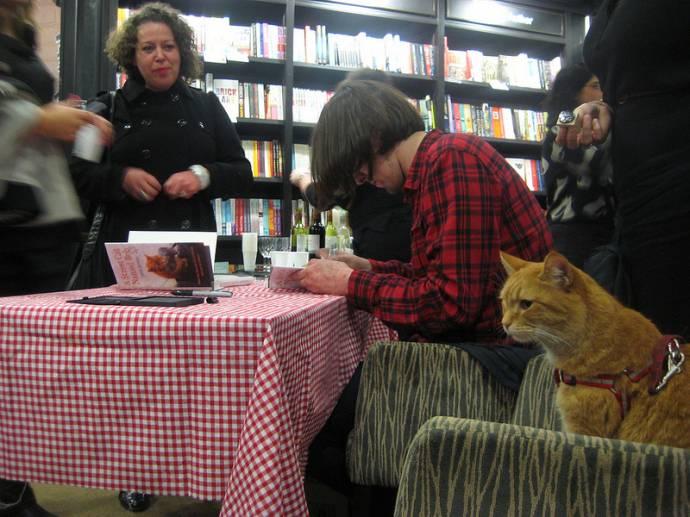 Сек рассказы с котом 8 фотография