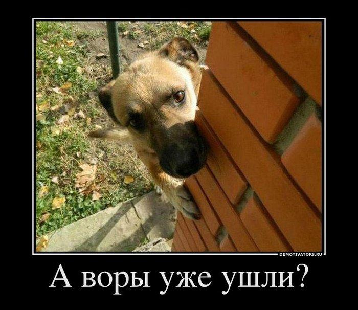 82655014_270925_avoryiuzheushli (700x606, 81Kb)
