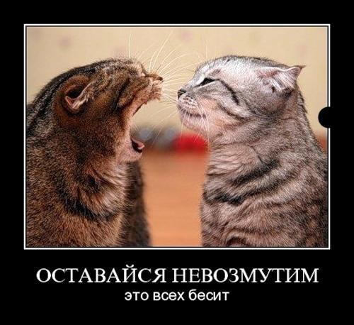 82655249_demotivatory_na_ljuboy_vkus_chast_3_2010_788624 (500x458, 39Kb)