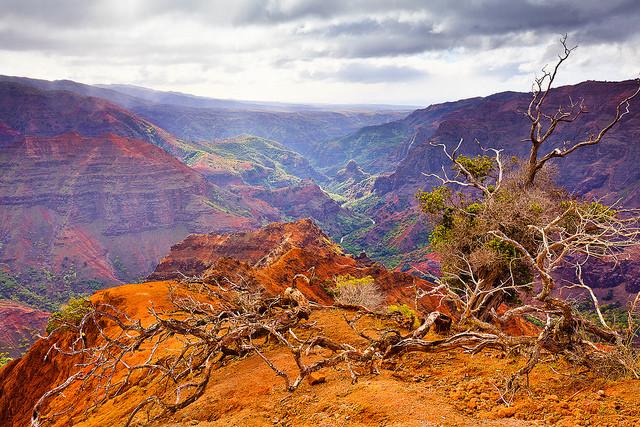 Каньон Ваймеа гавайские острова фото (640x427, 199Kb)