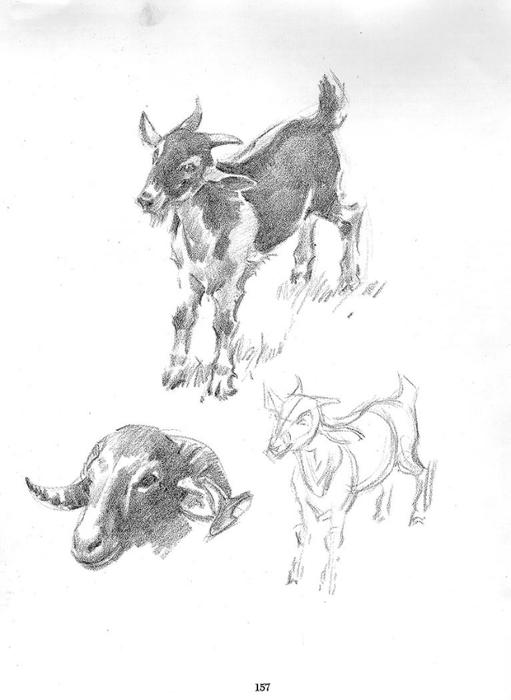 рисунки простым карандашом: