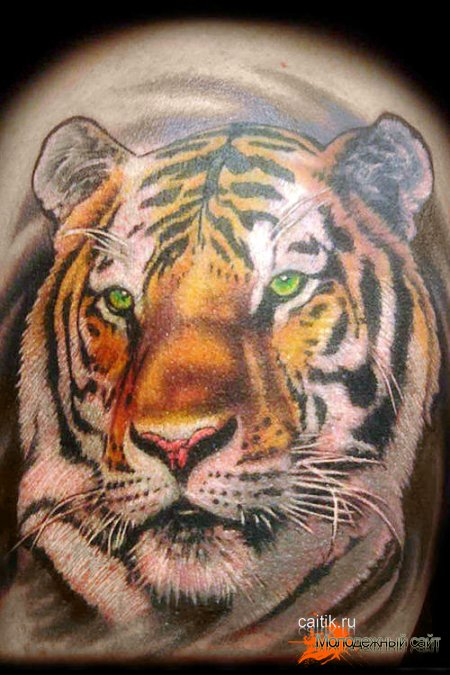 4771032_taty_tigra3 (450x675, 78Kb)